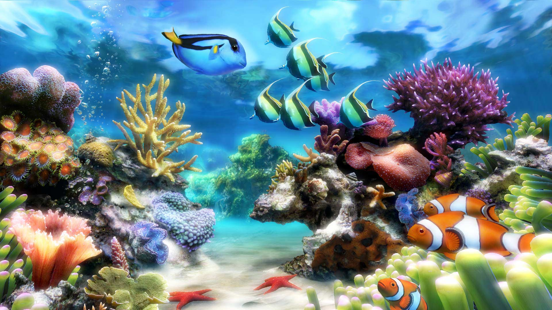 Sim aquarium virtual aquarium screensaver and live for Fish tank screen